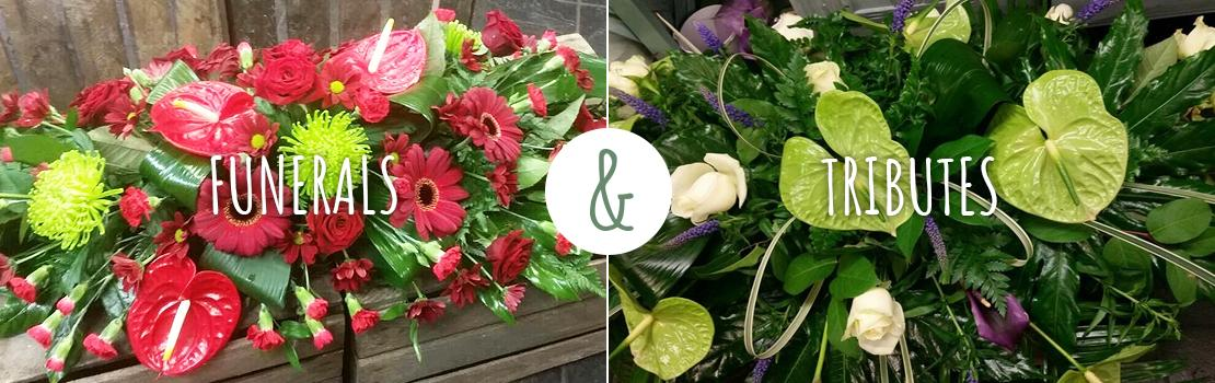 Home The Flower Shop Uttoxeter 01889 563322